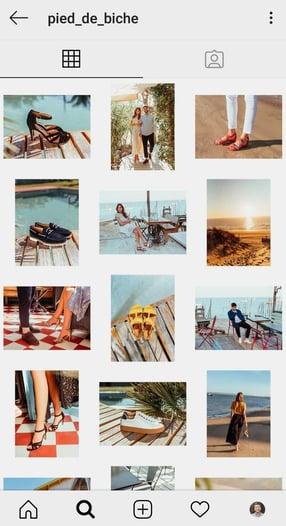 Feed Instagram de Pied de Biche