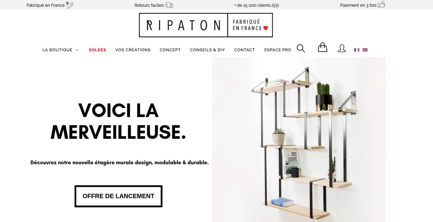 Page d'accueil du site Ripaton