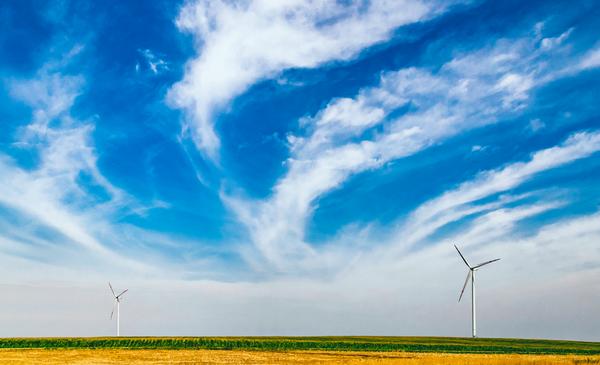 E-commerce et écologie sont ils compatibles ?