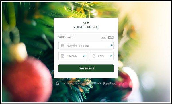 5 images pour personnaliser votre page de paiement - Spécial fêtes