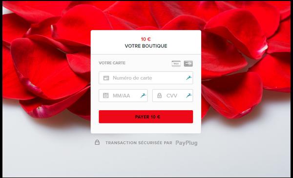 images d'inspiration pour personnaliser votre page de paiement